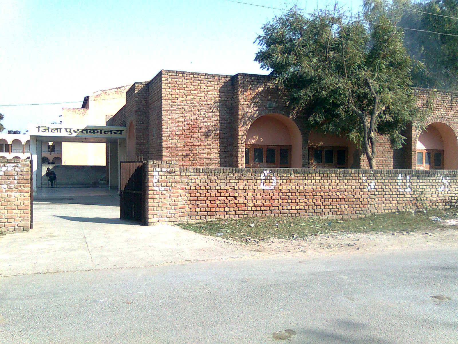 District Library Hisar
